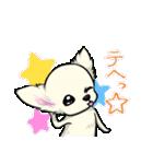 可愛いチワワの子犬(個別スタンプ:15)