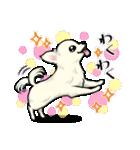 可愛いチワワの子犬(個別スタンプ:17)