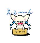 可愛いチワワの子犬(個別スタンプ:24)