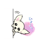 可愛いチワワの子犬(個別スタンプ:29)