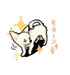 可愛いチワワの子犬(個別スタンプ:33)