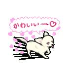 可愛いチワワの子犬(個別スタンプ:37)