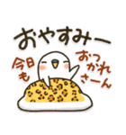 関西弁 白インコ(個別スタンプ:40)
