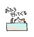 おじさん猫(肥満)の日常(個別スタンプ:11)