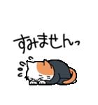 おじさん猫(肥満)の日常(個別スタンプ:20)