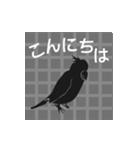 文字が全部、鳥になる(個別スタンプ:15)