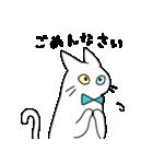 やさしい猫たち(個別スタンプ:17)
