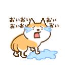 柴ちん6 柴犬のたくらみ(個別スタンプ:16)