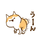 柴ちん6 柴犬のたくらみ(個別スタンプ:19)