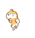 柴ちん6 柴犬のたくらみ(個別スタンプ:23)