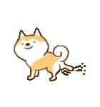 柴ちん6 柴犬のたくらみ(個別スタンプ:24)