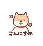 柴犬あんこ あいさつ編(個別スタンプ:02)