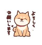 柴犬あんこ あいさつ編(個別スタンプ:04)