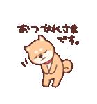 柴犬あんこ あいさつ編(個別スタンプ:05)