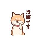 柴犬あんこ あいさつ編(個別スタンプ:08)