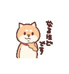 柴犬あんこ あいさつ編(個別スタンプ:09)