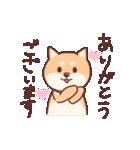 柴犬あんこ あいさつ編(個別スタンプ:12)