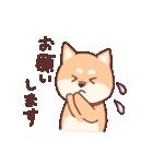 柴犬あんこ あいさつ編(個別スタンプ:17)