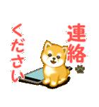 ちび秋田犬 連絡(個別スタンプ:2)