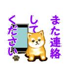 ちび秋田犬 連絡(個別スタンプ:3)