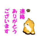 ちび秋田犬 連絡(個別スタンプ:5)