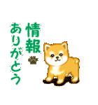 ちび秋田犬 連絡(個別スタンプ:6)