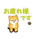 ちび秋田犬 連絡(個別スタンプ:17)