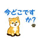ちび秋田犬 連絡(個別スタンプ:18)