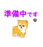 ちび秋田犬 連絡(個別スタンプ:19)