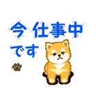 ちび秋田犬 連絡(個別スタンプ:21)