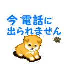 ちび秋田犬 連絡(個別スタンプ:24)