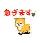 ちび秋田犬 連絡(個別スタンプ:25)