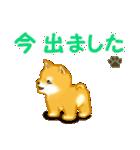 ちび秋田犬 連絡(個別スタンプ:26)