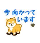 ちび秋田犬 連絡(個別スタンプ:27)
