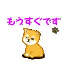 ちび秋田犬 連絡(個別スタンプ:29)