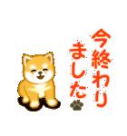 ちび秋田犬 連絡(個別スタンプ:30)
