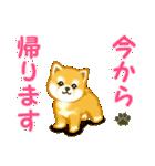 ちび秋田犬 連絡(個別スタンプ:33)