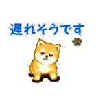 ちび秋田犬 連絡(個別スタンプ:35)