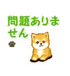 ちび秋田犬 連絡(個別スタンプ:37)