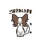 puchi.jr(個別スタンプ:01)