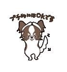 puchi.jr(個別スタンプ:04)