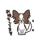 puchi.jr(個別スタンプ:07)