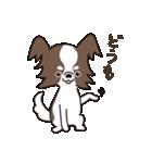 puchi.jr(個別スタンプ:10)