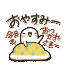 白インコ 【標準語編】(個別スタンプ:40)