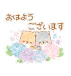 初夏❤️いやしばいぬ❤️16(個別スタンプ:02)