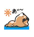 まる柴っちの夏(個別スタンプ:4)