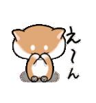 まる柴っちの夏(個別スタンプ:15)