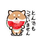 まる柴っちの夏(個別スタンプ:16)