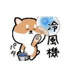 まる柴っちの夏(個別スタンプ:20)