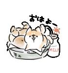 日常会話をする犬+(個別スタンプ:01)